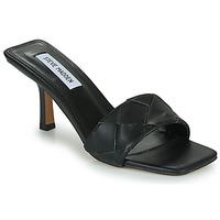 Schoenen Dames Sandalen / Open schoenen Steve Madden FRENZY Zwart