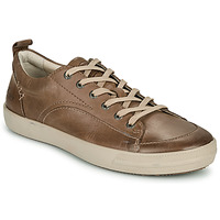 Schoenen Heren Lage sneakers Pataugas CARL H2E Taupe