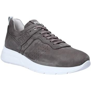 Schoenen Heren Lage sneakers NeroGiardini P900920U Grijs