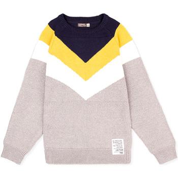 Textiel Kinderen Truien Losan 023-5001AL Grijs