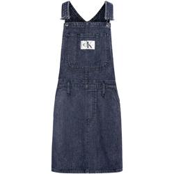 Textiel Dames Jumpsuites / Tuinbroeken Calvin Klein Jeans J20J214426 Blauw