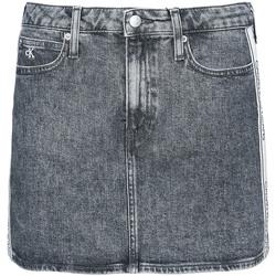 Textiel Dames Rokken Calvin Klein Jeans J20J215121 Grijs