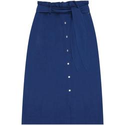Textiel Dames Rokken Calvin Klein Jeans K20K202103 Blauw