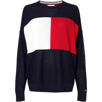 Textiel Dames Sweaters / Sweatshirts Tommy Hilfiger WW0WW28582 Blauw