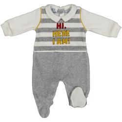 Textiel Kinderen Trainingspakken Melby 20N2470 Grijs