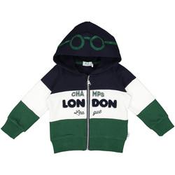 Textiel Kinderen Sweaters / Sweatshirts Melby 20D0210 Groen