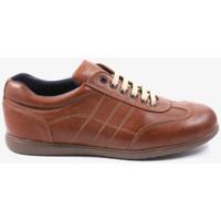 Schoenen Heren Sneakers Traveris 24102 Bruin
