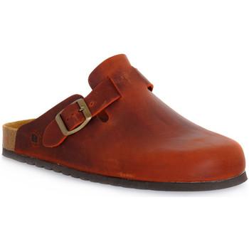 Schoenen Klompen Bioline RUGGINE INGRASSATO Arancione