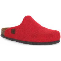 Schoenen Klompen Bioline RIBES MERINOS Rosso