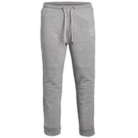Textiel Jongens Trainingsbroeken Jack & Jones JJIGORDON JJSHARK SWEAT PANT Grijs
