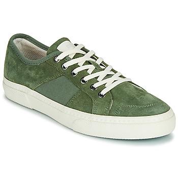 Schoenen Heren Lage sneakers Globe SURPLUS Groen