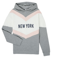 Textiel Meisjes Sweaters / Sweatshirts Name it NKFSOHAPPY Multicolour