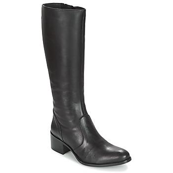 Schoenen Dames Hoge laarzen Betty London IROIN Zwart