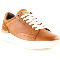 Schoenen Heren Lage sneakers Wrangler WM01181A Bruin