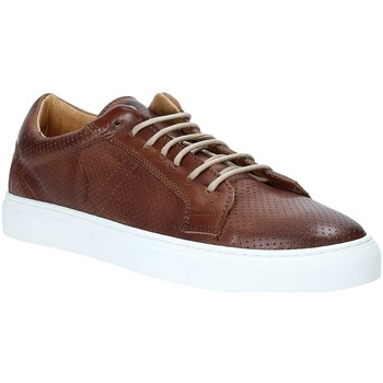 Schoenen Heren Lage sneakers Rogers DV 08 Bruin