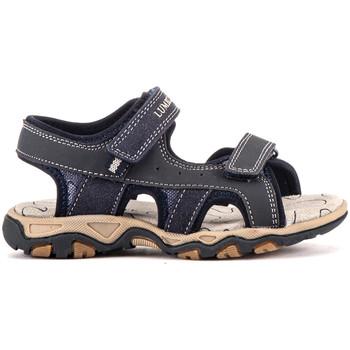 Schoenen Kinderen Sandalen / Open schoenen Lumberjack SB07606 017 V69 Blauw