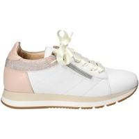 Schoenen Dames Lage sneakers Exton E18 Wit