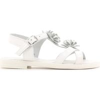 Schoenen Kinderen Sandalen / Open schoenen Lulu LT080056L Wit