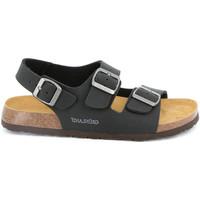Schoenen Heren Sandalen / Open schoenen Grunland SB3645 Zwart