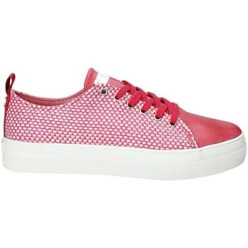 Schoenen Dames Lage sneakers U.S Polo Assn. TRIXY4021S9/TY1 Rood