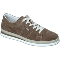 Schoenen Heren Lage sneakers IgI&CO 3138322 Groen