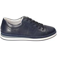 Schoenen Heren Lage sneakers IgI&CO 3138100 Blauw