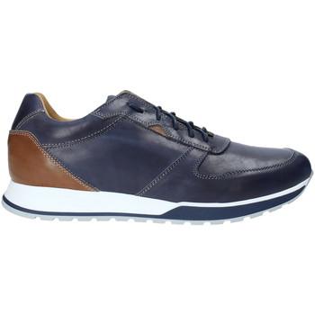 Schoenen Heren Lage sneakers Rogers 5068 Blauw