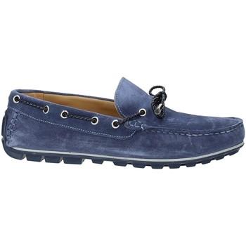 Schoenen Heren Mocassins Rogers 700 Blauw