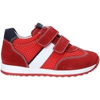 Schoenen Kinderen Lage sneakers Nero Giardini P923451M Rood