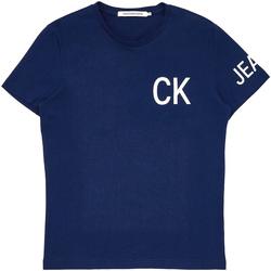 Textiel Heren T-shirts korte mouwen Calvin Klein Jeans J30J312754 Blauw