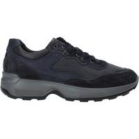 Schoenen Heren Lage sneakers IgI&CO 4114311 Blauw
