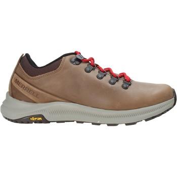 Schoenen Heren Wandelschoenen Merrell J48785 Bruin