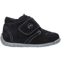 Schoenen Kinderen Lage sneakers NeroGiardini A919030M Blauw