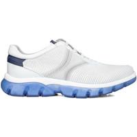 Schoenen Heren Lage sneakers CallagHan 42700 Wit