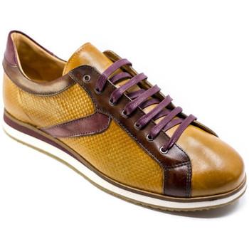 Schoenen Heren Lage sneakers Exton 831 Bruin