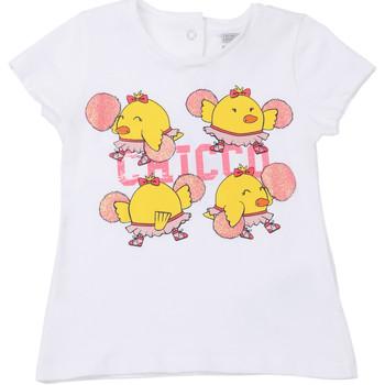 Textiel Kinderen T-shirts korte mouwen Chicco 09006955000000 Wit