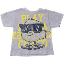 Textiel Kinderen T-shirts korte mouwen Chicco 09006918000000 Grijs