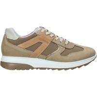 Schoenen Heren Lage sneakers IgI&CO 5129633 Beige