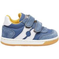Schoenen Kinderen Lage sneakers Falcotto 2014666 01 Blauw