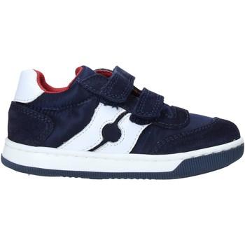 Schoenen Kinderen Sneakers Falcotto 2014666 01 Blauw