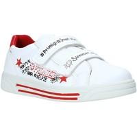 Schoenen Kinderen Lage sneakers Primigi 5377122 Wit
