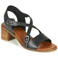 Schoenen Dames Sandalen / Open schoenen Kickers VOLUBILIS Zwart