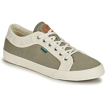Schoenen Heren Lage sneakers Kickers ARVEIL Kaki / Wit