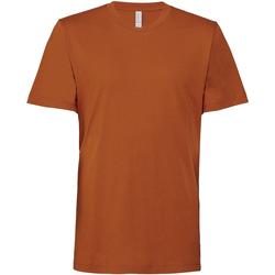 Textiel T-shirts korte mouwen Bella + Canvas CV3001 Herfst