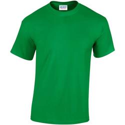 Textiel Heren T-shirts korte mouwen Gildan GD05 Iers Groen