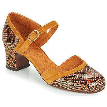 Schoenen Dames pumps Chie Mihara TROMPETA Bruin