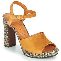 Schoenen Dames Sandalen / Open schoenen Chie Mihara CASSETTE Bruin