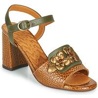 Schoenen Dames Sandalen / Open schoenen Chie Mihara FADIMA Bruin
