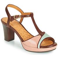 Schoenen Dames Sandalen / Open schoenen Chie Mihara NATI Bruin / Roze / Groen