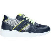 Schoenen Kinderen Lage sneakers NeroGiardini P933572M Blauw